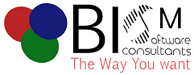 BISM Software Consultants